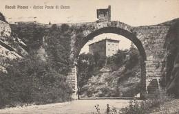 ASCOLI PICENO - ANTICO PONTE DI CECCO - Ascoli Piceno