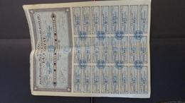 Action Titre De 100 Francs De 1928 - Société Des Bains De Mer Du Casino Du Golf De La Ciotat - Actions & Titres
