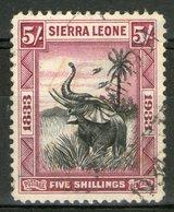 """SIERRA LEONE: N°148 Oblitéré """"éléphant""""      - Cote 225€ - - Sierra Leone (...-1960)"""