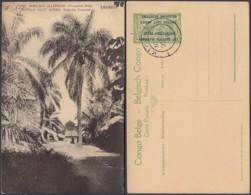 "CONGO EP VUE 5C VERT ""N°2 EST AFRICAIN ALLEMAND ( Occupation Belge) UDJIDJI"" (DD) DC7003 - Ganzsachen"
