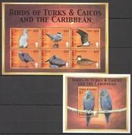 PK156 TURKS & CAICOS FAUNA BIRDS OF TURKS & CAICOS & THE CARIBBEAN 1KB+1BL MNH - Oiseaux