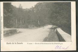 CP Des Bords De La Semois - Vresse - Route D'Orchimont Et Du Petit Fays 1902.  - W0484 - Bièvre