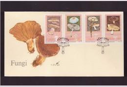 CISKEI - 19 3 1987 FDC FUNGHI - Funghi