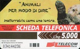 """Scheda Telefonica """"La Lontra"""" - Scadenza 31/12/2000 (usata) - Pubbliche Figurate Ordinarie"""