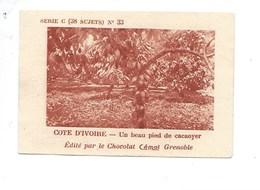Chromo AOF Côte D'Ivoire CACAOYER CACAO TB 75 X 50 Mm Pub: Chocolat Cémoi Au Dos Colonies Françaises - Chocolat
