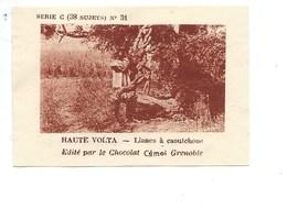 Chromo AOF Haute Volta Lianes à Caoutchouc TB 75 X 50 Mm Pub: Chocolat Cémoi Au Dos Colonies Françaises - Chocolate