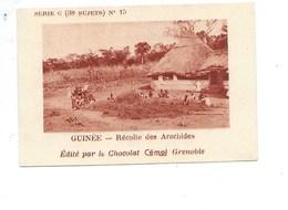 Chromo AOF GUINÉE Récolte Des Arachides TB 75 X 50 Mm Pub: Chocolat Cémoi Au Dos Colonies Françaises - Chocolat