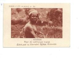 Chromo AOF GUINÉE Cultivateur FOULAH TB 75 X 50 Mm Pub: Chocolat Cémoi Au Dos Colonies Françaises - Chocolat