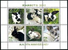 MUSOGRAD - Micronation - 2010 - Musogradian Rabbits - 6v Miniature Sheet  -  Mint Never Hinged - Unclassified