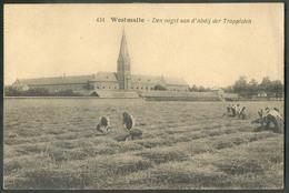 CP De WESTMALLE - Den Oogst Aan D'Abdij Der Trappisten - W0504 - Malle