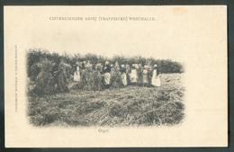 CP De WESTMALLE - Cistercienzeer Abdij (trappisten) BIERE BIER - W0505 - Malle