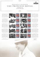 Gran Bretagna, 2017 CS35 Sua Altezza Reale La Principessa Anna, Smiler, Con Custodia, Perfetto - Personalisierte Briefmarken