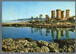 °°° Cartolina - Nardò S. Maria Al Bagno Oasi Quattro Colonne Viaggiata °°° - Lecce
