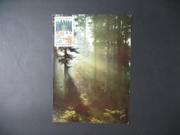 Carte-Maximum 1965  N° 1460 - 1960-69