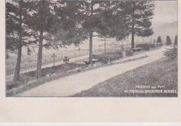 Friedhof Der 74em  Am Fusse Des Spicherer Berges - Frankreich