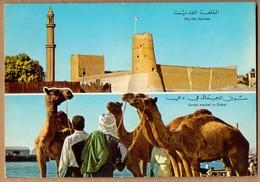 THE OLD FORTRESS , CAMEL MARKET , DUBAI * VINTAGE POSTCARD - Dubai