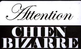 MAGNET ATTENTION CHIEN BIZARRE - Magnets