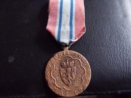 Médaille De NARVIK  Norvège - Médailles & Décorations