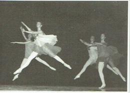 Foto/Photo. Ballet. Opéra. Danse. 1971. - Métiers