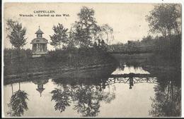Kapellen - Cappellen - Warande - Kasteel Op Den Wal (uitg Hoelen Nr 3456) - 1907 - Kapellen