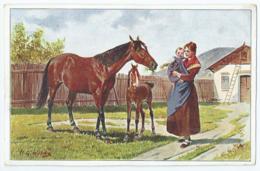 Cheval - Horse - Paard - Pferd - Serie 5 Lieblinge Nr 4 - Chevaux