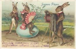 Cpa Joyeuses Pâques – Lapins Humanisés, Photo, Photographe    ( FA ) - Dressed Animals