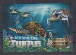 O351. Sierra Leone - MNH - 2016 - Nature - Marine Life - Turtles - Bl - Pflanzen Und Botanik