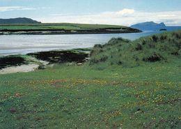 1 AK Irland Ireland * Dingle Halbinsel Blick Zur Insel Inishtooskert - Die Nördlichste Der Blasket-Inseln - County Kerry - Kerry