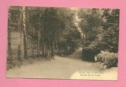 C.P. Mont De L'Enclus =  Route  De La Tour - Mont-de-l'Enclus