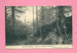 C.P. Mont De L'Enclus =  Chemin  Des  RACINES - Mont-de-l'Enclus