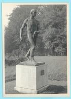 0803 - BELGIE - MARIEMONT - LE SEMEUR De CONSTANTIN MEUNIER - Morlanwelz