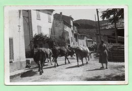 CPSM - ALLONS - Entrée Du Village - ANIMATION - - Autres Communes