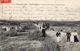 ILE D'OLERON ROUTE DE SAINT-TROJAN A LA GRANDE PLAGE - Ile D'Oléron