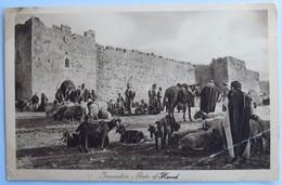 C. P. A. : ISRAEL : JERUSALEM, Gate Of Herod - Israel