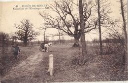 CPA Forêt De Sénart Carrefour De L'Ermitage - Sénart
