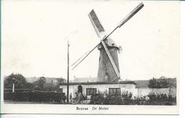 Beerse De Molen - Beerse