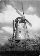De Molen Van  R. Hoste - Ruiselede - Ruiselede