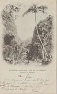 Ile De La  Réunion : Colonies :  ST  PAUL , Le  Bernica  ( Timbre , Destinée à  Dreux ) - Saint Paul