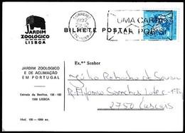 Bilhete Postal - Jardim Zoológico De Lisboa / 1992 - 1910-... República