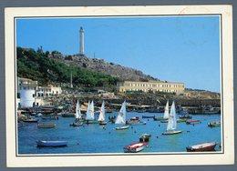 °°° Cartolina - S. Maria Di Leuca Vele Nel Porticciolo Viaggiata °°° - Lecce