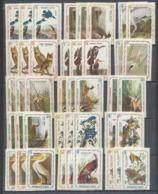 203a Haiti ** MNH Serie Oiseaux Tirage Privé Local Stamp Vignette (bird Birds Oiseau) 1975 Dont Rapaces 41 Valeurs - Haïti