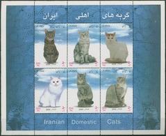 Iran 2004 Hauskatzen: Kuzhaar, Langhaar, Perser Block 41 Postfrisch (C6594) - Iran