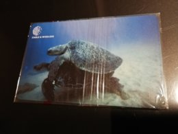 ASCENSION ISLAND   3 Pound TURTLES MATING  CHIPCARD MINT New  Logo C&W - Ascension (Insel)