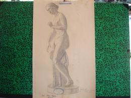Konigl. Technische Hochschule Munchen Vorprufung 1906, Paul Dfauer Professor, Fritz Huber, Fusain Femme Nue (20-392) - Pastel