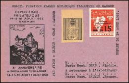 0054/ France Grève De Saumur 1953 Carte Lettre (cover Card) Combinaison - Strike Stamps