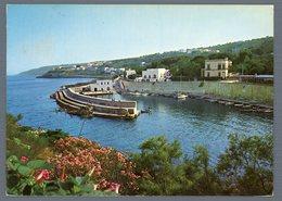 °°° Cartolina - Tricase Marina Il Porto Viaggiata °°° - Lecce