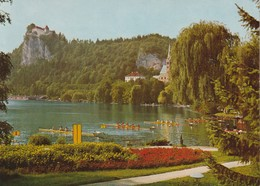 Rowing In Slovenia - Bled - Rowing