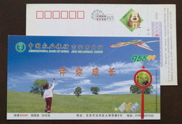 Girl Playing A Kite,China 2006 Agricultural Bamk Ji'an Subsentral Branch Advertising Pre-stamped Card - Childhood & Youth