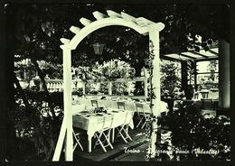 Torino / Turin  -  Ristorante Pavia  -  Ansichtskarte Ca.1970    (12442) - Bars, Hotels & Restaurants
