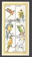 PK168 ZAMBIA FAUNA BIRDS PARROTS 1KB MNH - Perroquets & Tropicaux